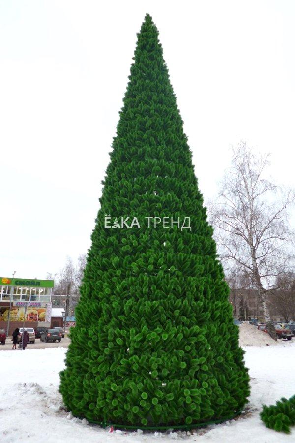 Уличная сосна Уральская каркасная зелёная