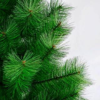 Интерьерная сосна Рублевская зеленая