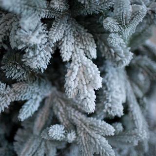 Искусственная ель Россо снежная премиум