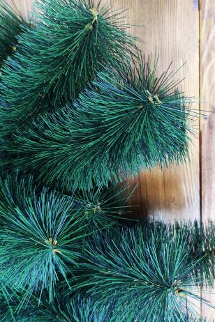 Сегментная сосна Сибирская зелёная
